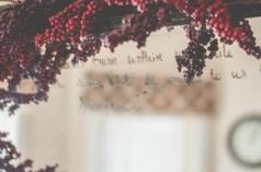 mirror berries